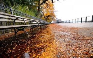 autumn-370370_640