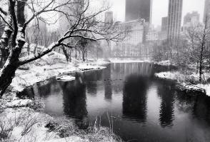 central-park-snow-vicki-jauron