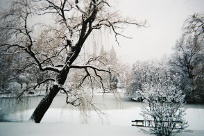 Central_Park_under_snow,_NYC,_February_2010