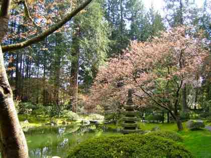 nitobe-japanese-zen-garden-stone-lantern