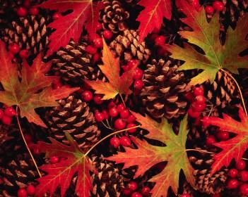 Autumn Leaves, Berries and Pinecones ca. 1994