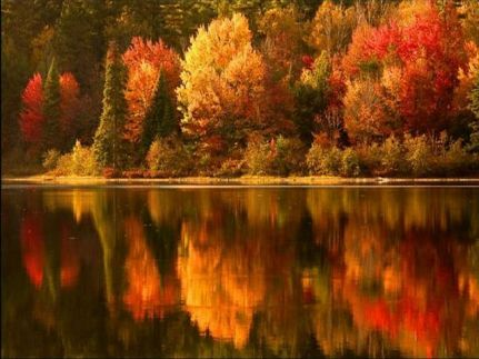 Fall colors over the lake