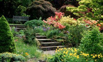 branklyn-garden