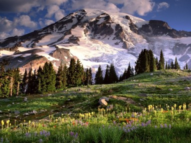 spring-mountain-scene-windows-8-wallpaper-1024x768