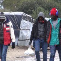 Sie verkaufen unser Land an die Illegalen: BAMF Bremen ist kein Einzelfall
