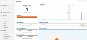 Google Analytics Real-Time Overview Dashboard