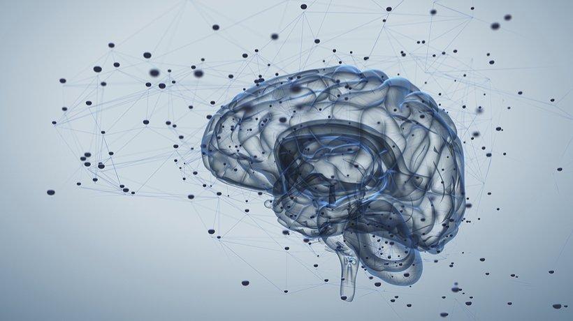 Evolving Enactivism: Neurodynamics sans content