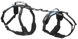 The Best Dog Harness