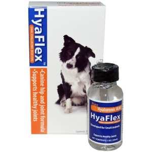 Hyalogic for Dogs