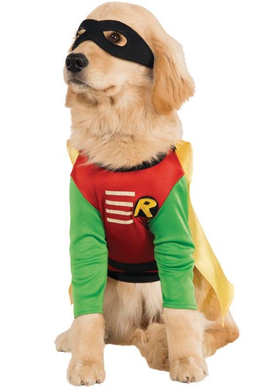Big Dog Superhero Halloween Costume