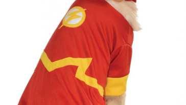 Flash Dog Costume