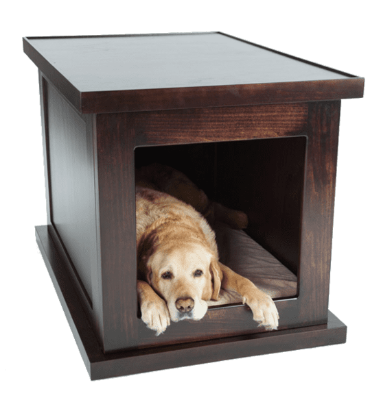 The Zen Dog Crate - Thinking Outside the Box