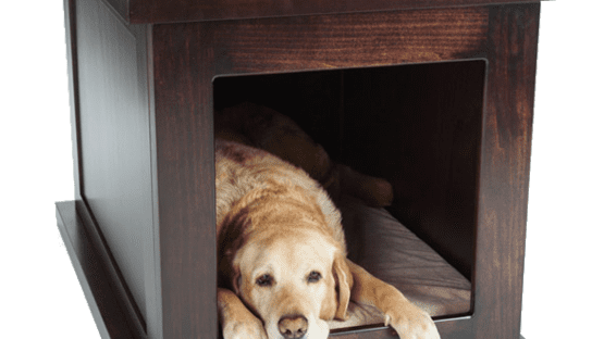 Zen Crate for Anxious Dogs