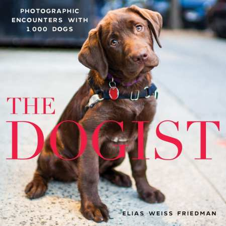 The Dogist: Photographic Encounters with 1,000 Dogs Hardcover by Elias Weiss Friedman