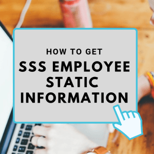 sss employee static information and employment history