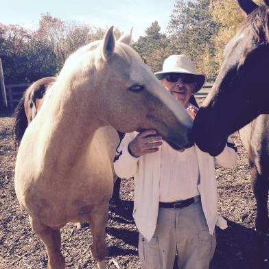 phil uganda horse