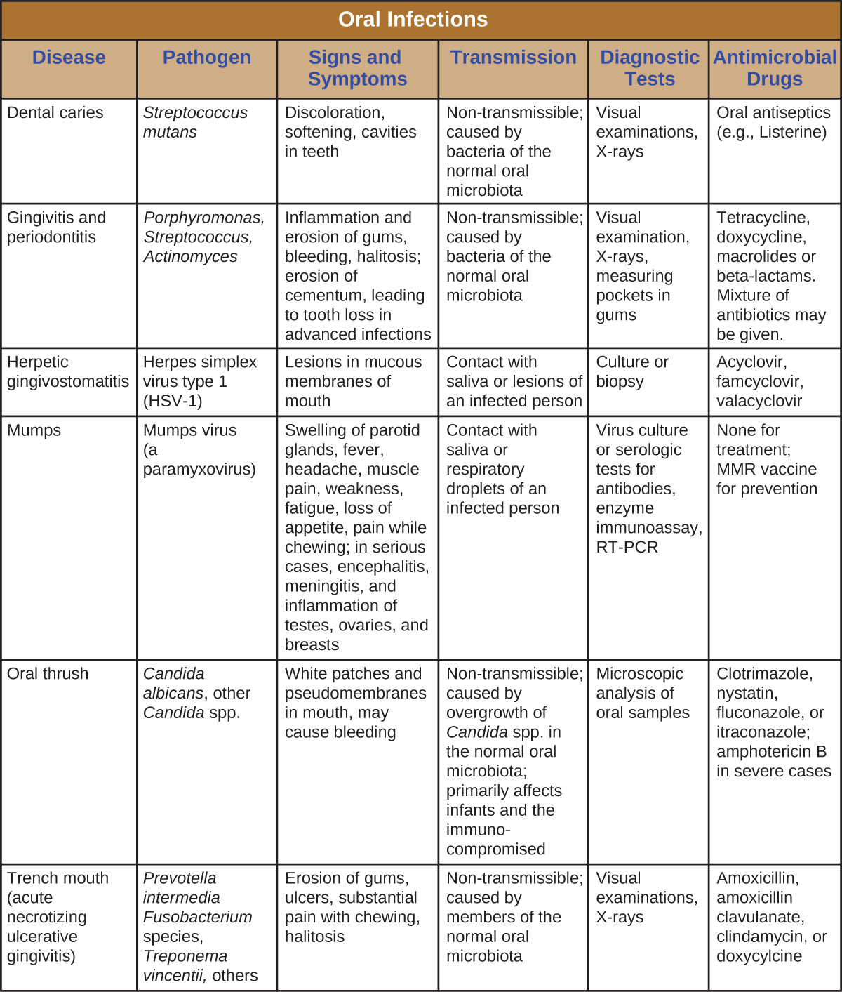 Microbial Diseases Of The Mouth And Oral Cavity Microbiology