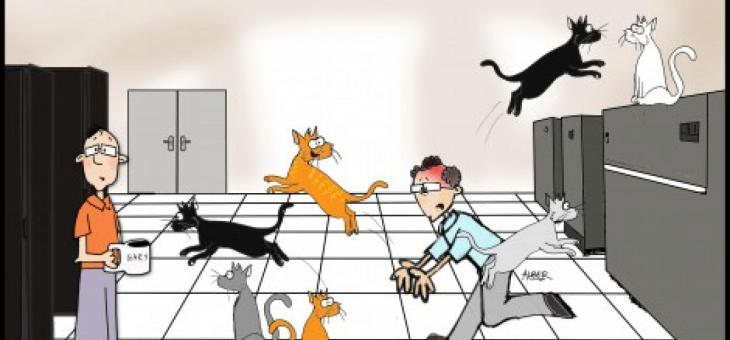 A Quick Introduction to Project Management (aka Cat Herding)