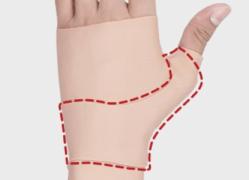 Phiten Wrist support double support