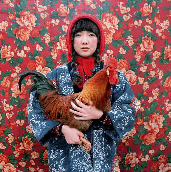 Untitled by Shu (Shuwei Liu )