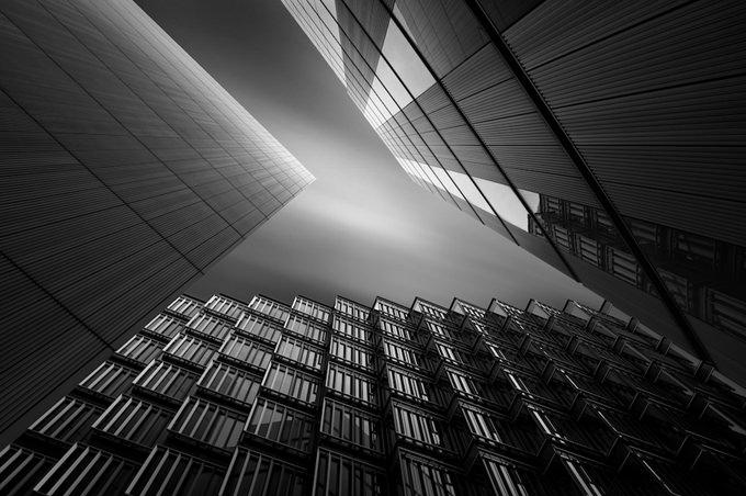 G R I L L E by Paul Wheeler
