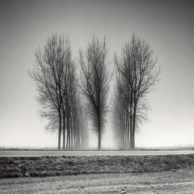 Three Neat Rows by Pierre Pellegrini