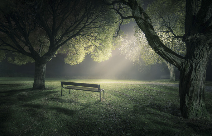 In the Spotlight by Mikko Lagerstedt