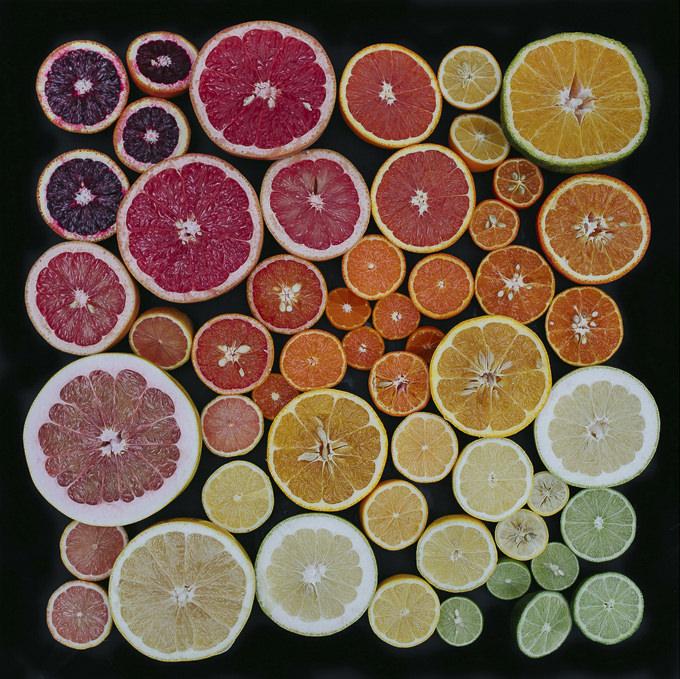 citrus fest 2014 by emily blincoe