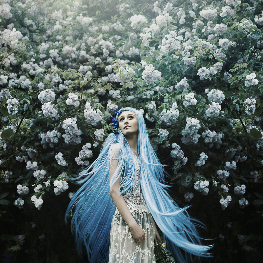Enchanted Garden by Bella Kotak