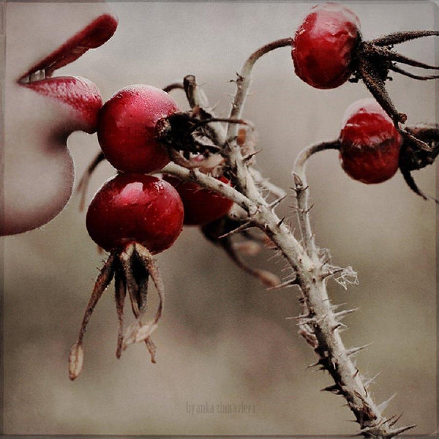Fairy beauty project by Anka Zhuravleva