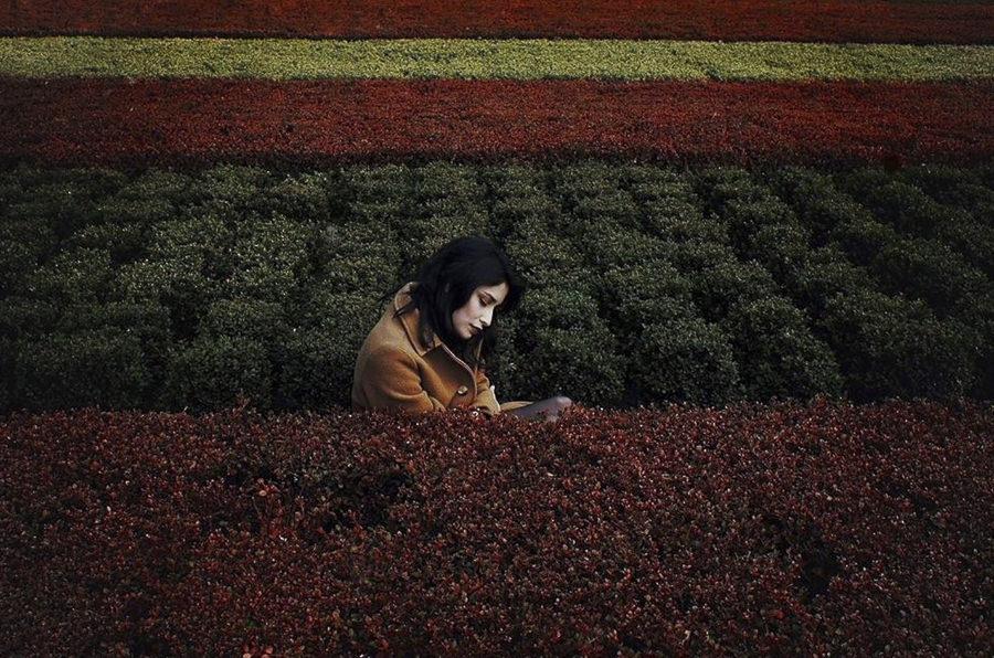 color blocking by Mehran Djo
