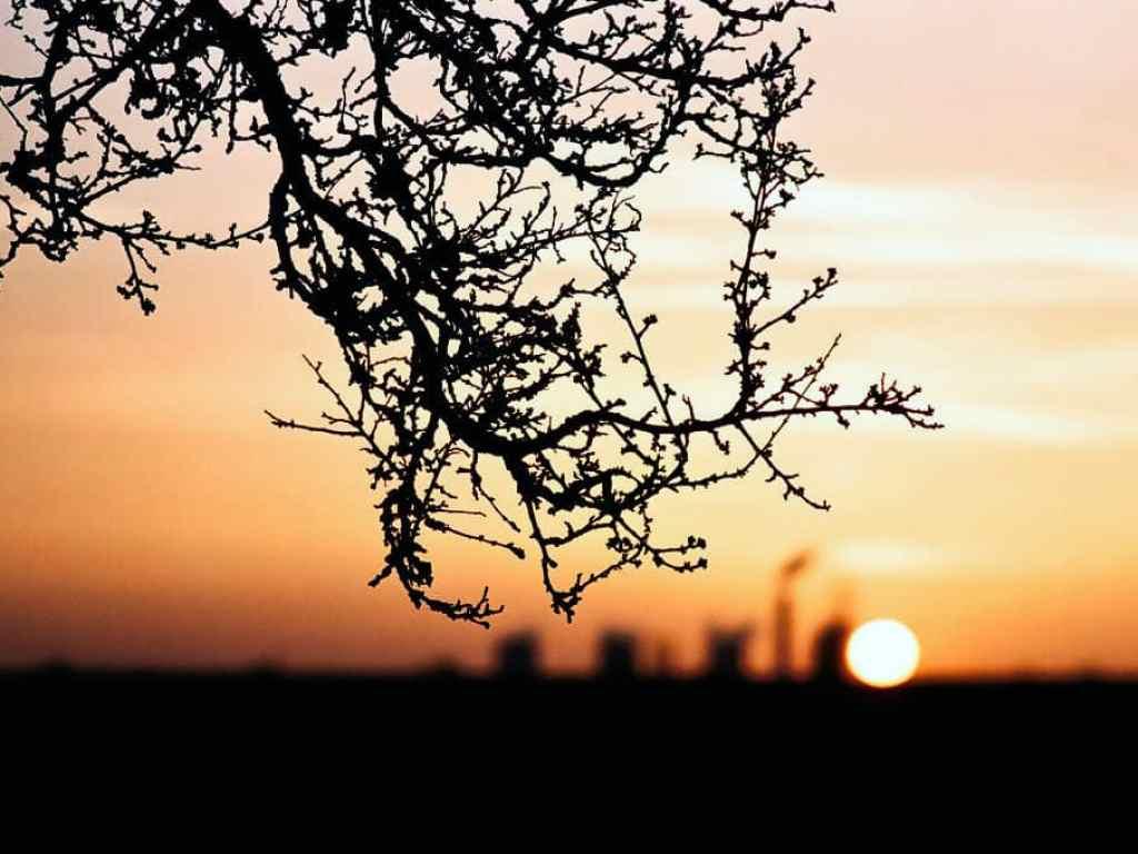 phlogger sunset landscape