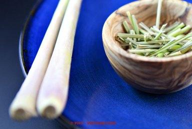Citroengras (foto: Pho Vietnam © Kim Le Cao)