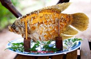 Gefrituurde vis (foto: Pho Vietnam © Kim Le Cao)