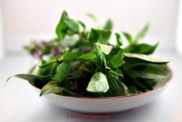 Thaise basilicum (foto: Pho Vietnam © Kim Le Cao)