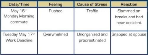 Stress-journal-sample