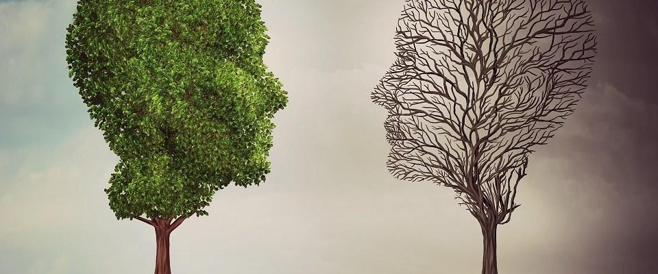 bipolar disorder story