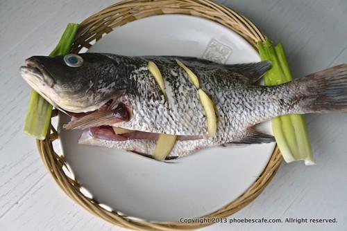 담백한 중국 생선 찜 레시피