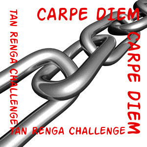 Tan Renga Challenge at Carpe Diem Haiku Kai