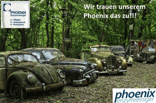 Phoenix Autositze Insektenentferner Geruchsentferner
