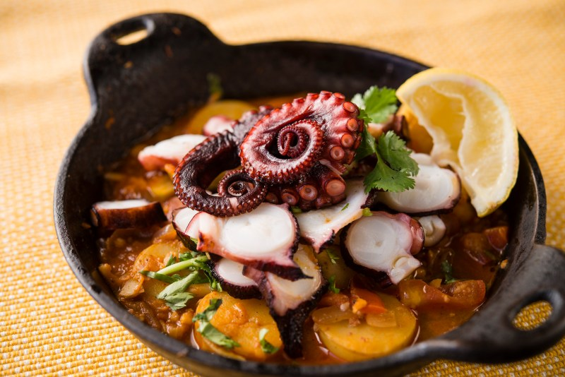 SOL Cocina's Winter Menu Warms Up Scottsdale: Spanish Grilled Octopus
