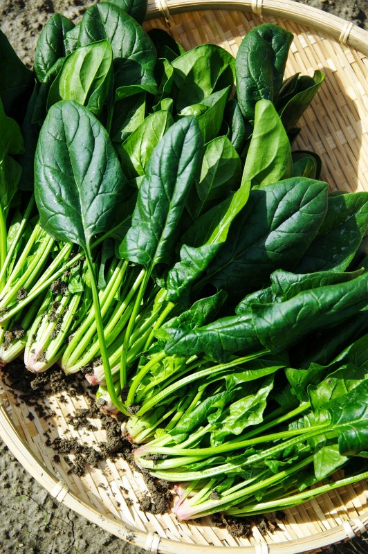Spinach: Foods that help to ease anxiety