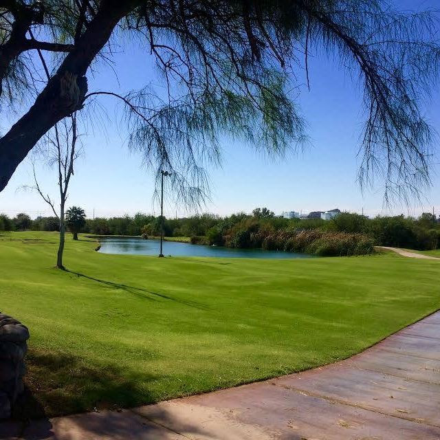Singh Meadows in Tempe to Open January 21st