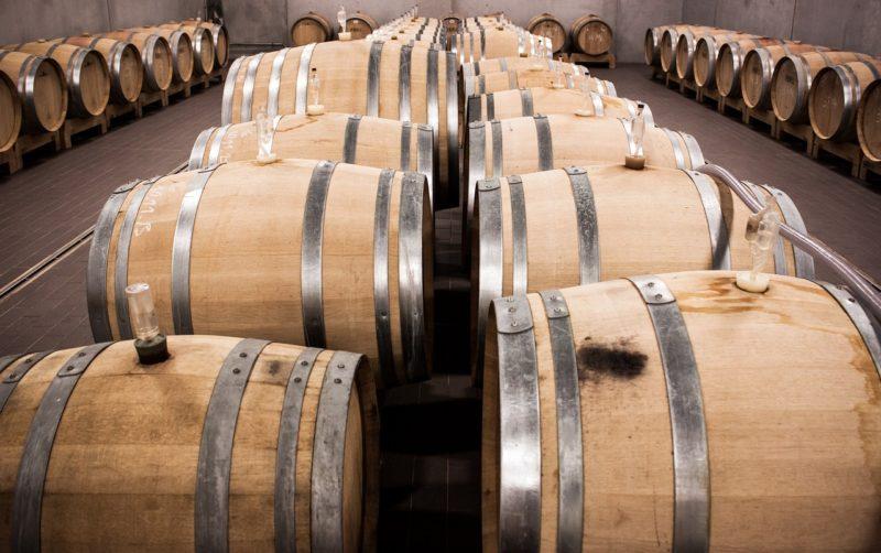 Winemaking 101 at LDV