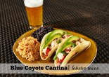 Lobster Tacos at Blue Coyote Cantina