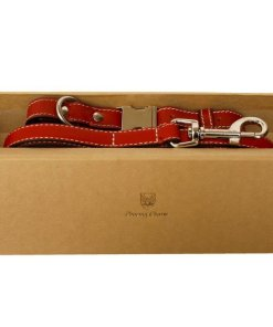 collar and lead set in a branded box