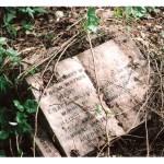 garden memorial words epitah