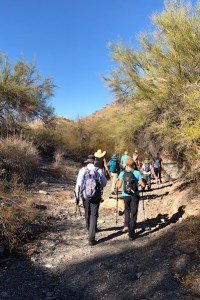image of several hikers hiking through a desert landscape