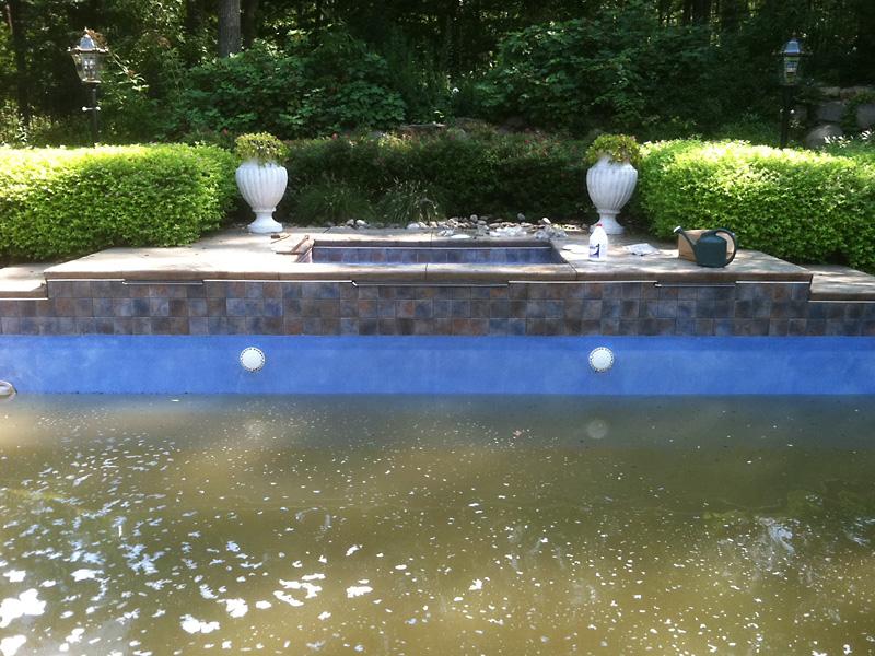 Acid Wash Expert And Pool Expert Advice Pool Expert Advice