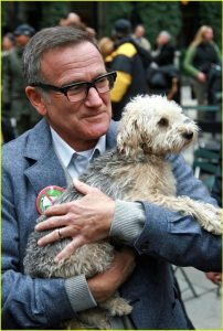robin-williams-law-and-order-svu-04